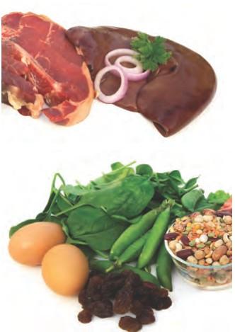 prenatal iron deficiency