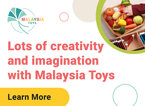 What you should know about Malaysia Toys online toy store today!